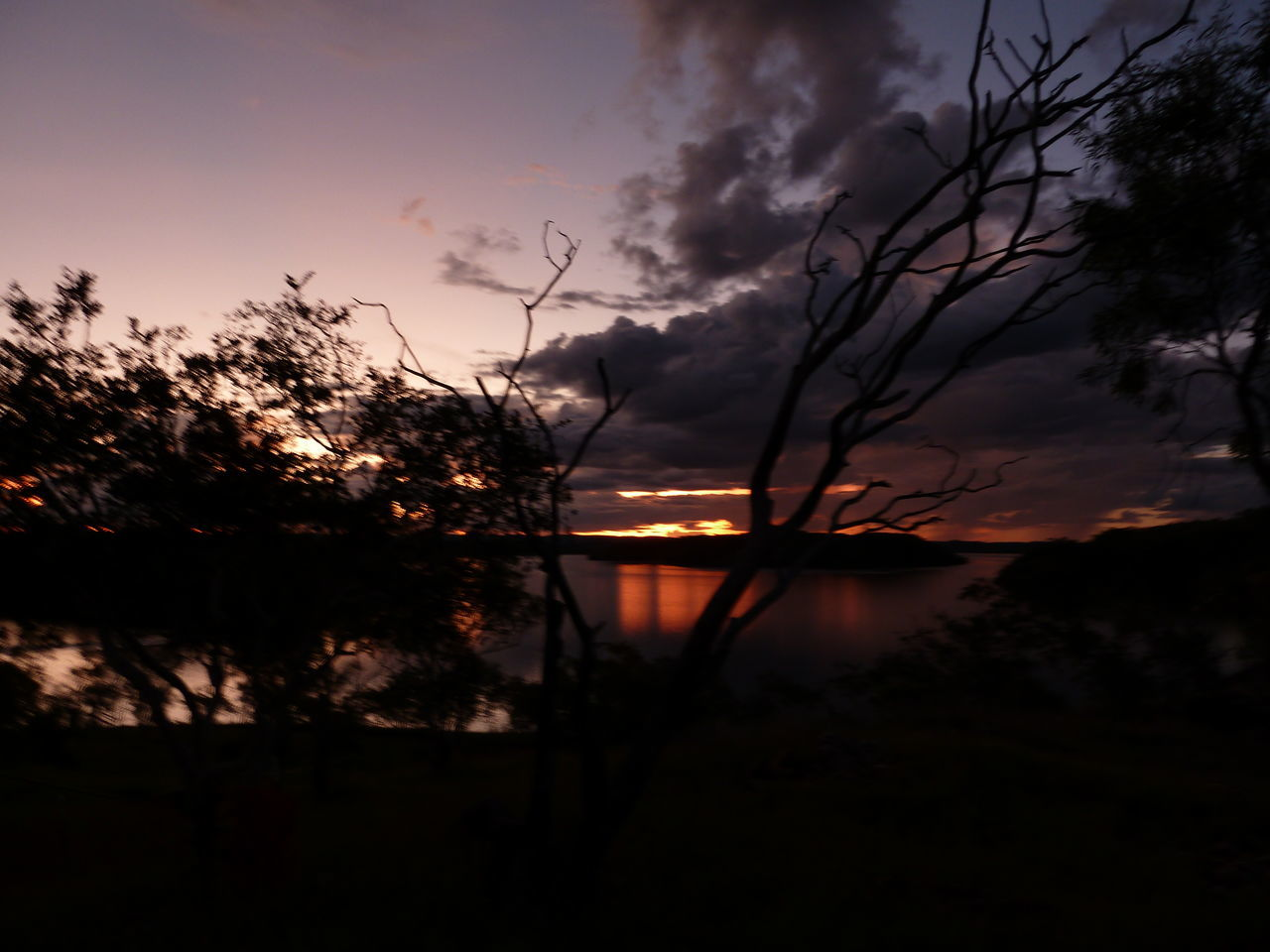 sunset, silhouette, tree, nature, tranquil scene, beauty in nature, sky, scenics, tranquility, no people, plant, cloud - sky, outdoors, lake, growth, grass, water, day