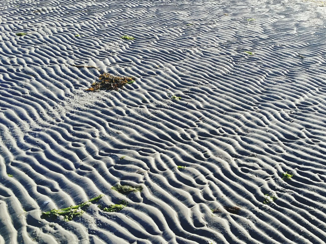 Out Walking Beach Textures And Surfaces Sandy Ripples