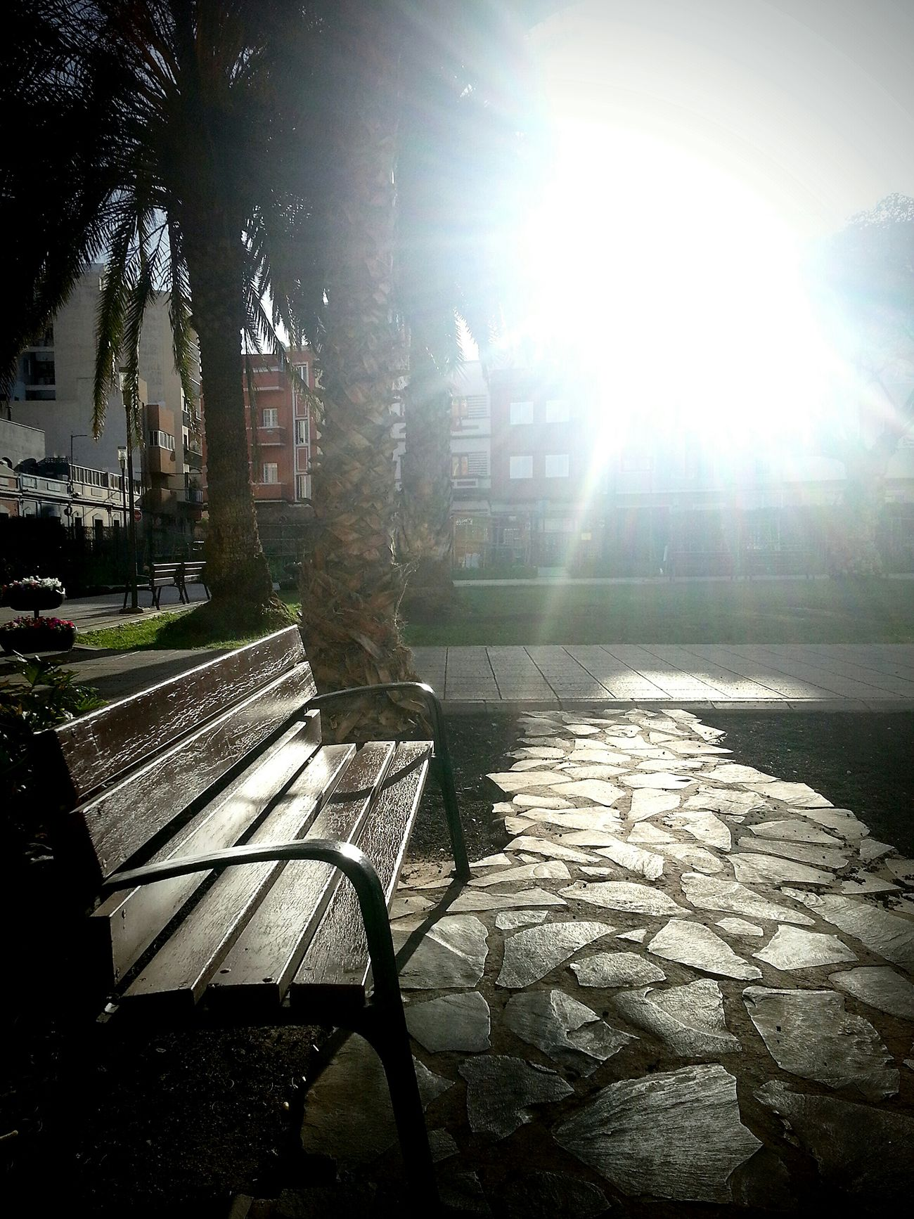★★☆HAPPY NEW YEAR EYEEMERS☆★★ | ★★☆FELIZ AÑO NUEVO EYEEMER@S☆★★ We Are Photography, We Are EyeEm Eye4photography  City Nature ...Rincones De Las Palmas ModernA...