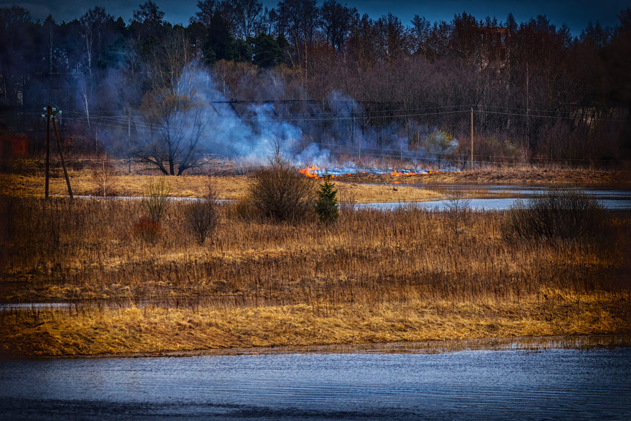 Burning dry grass on the river bank. Spring. Burning Fire Grass Landscape Nature No People Outdoors Scenics Tree Water
