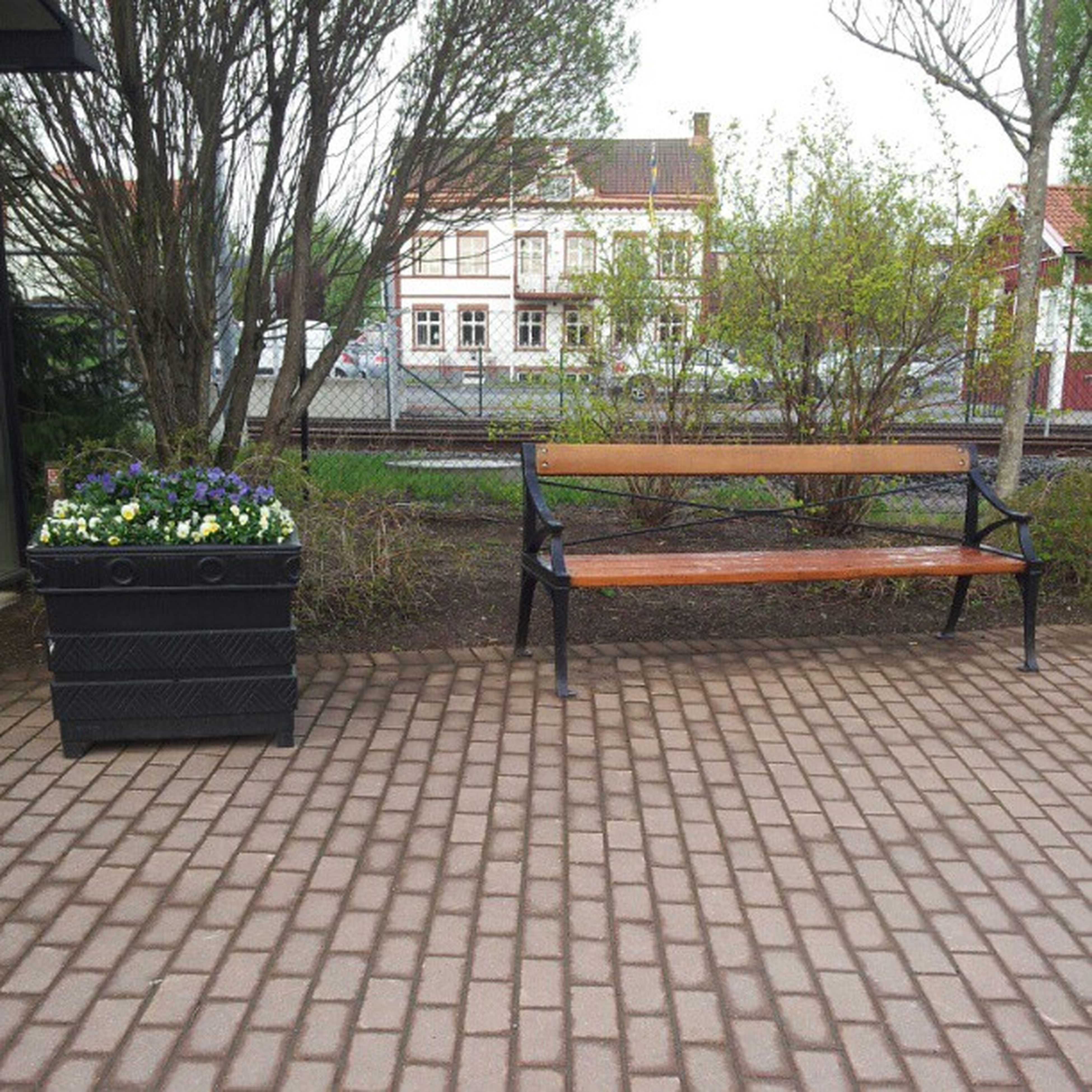 tree, building exterior, built structure, architecture, chair, growth, bench, absence, plant, empty, house, potted plant, park - man made space, table, lawn, seat, front or back yard, day, sunlight, city