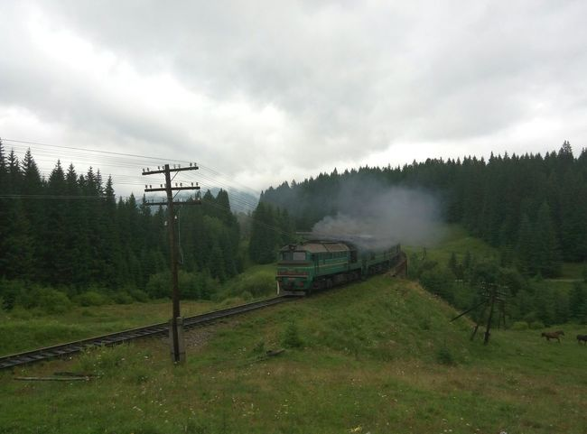 Forest Forest Photography Train Trainphotography Mountain View Karpathian Ukraine Vorohta