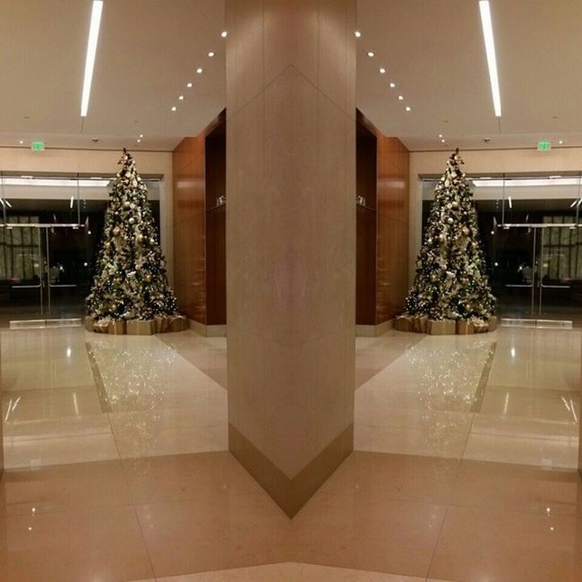Christmas Tree in the lobby of Salon Republic in Beverly Hills. Perfect photo opportunity. PatriciaLynnLaasHairCo Patricialynnlaas Christmastree Photomirror