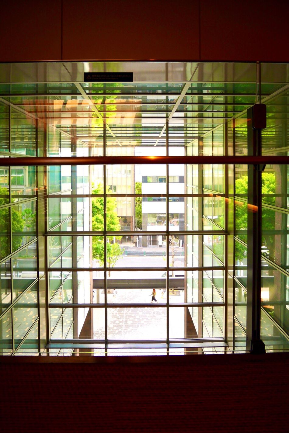 Finding New Frontiers Glass - Material Transparent Growth Green Color EyeEm Gallery EyeEm Best Shots 反射 Reflection Reflection_collection Adapted To The City The City Light