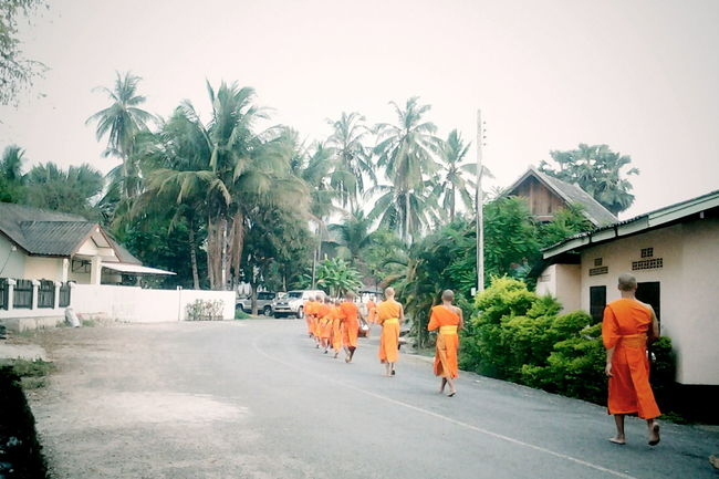 Everydaylife Dailylife Streetphotography Monks ALMS Luang Prabang Laos Street View Orange Robes Urbanlife Countryside Travelshots Feel The Journey