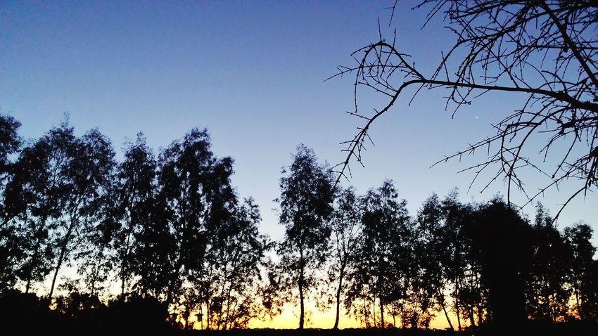 First Eyeem Photo Sunset Nature Sky