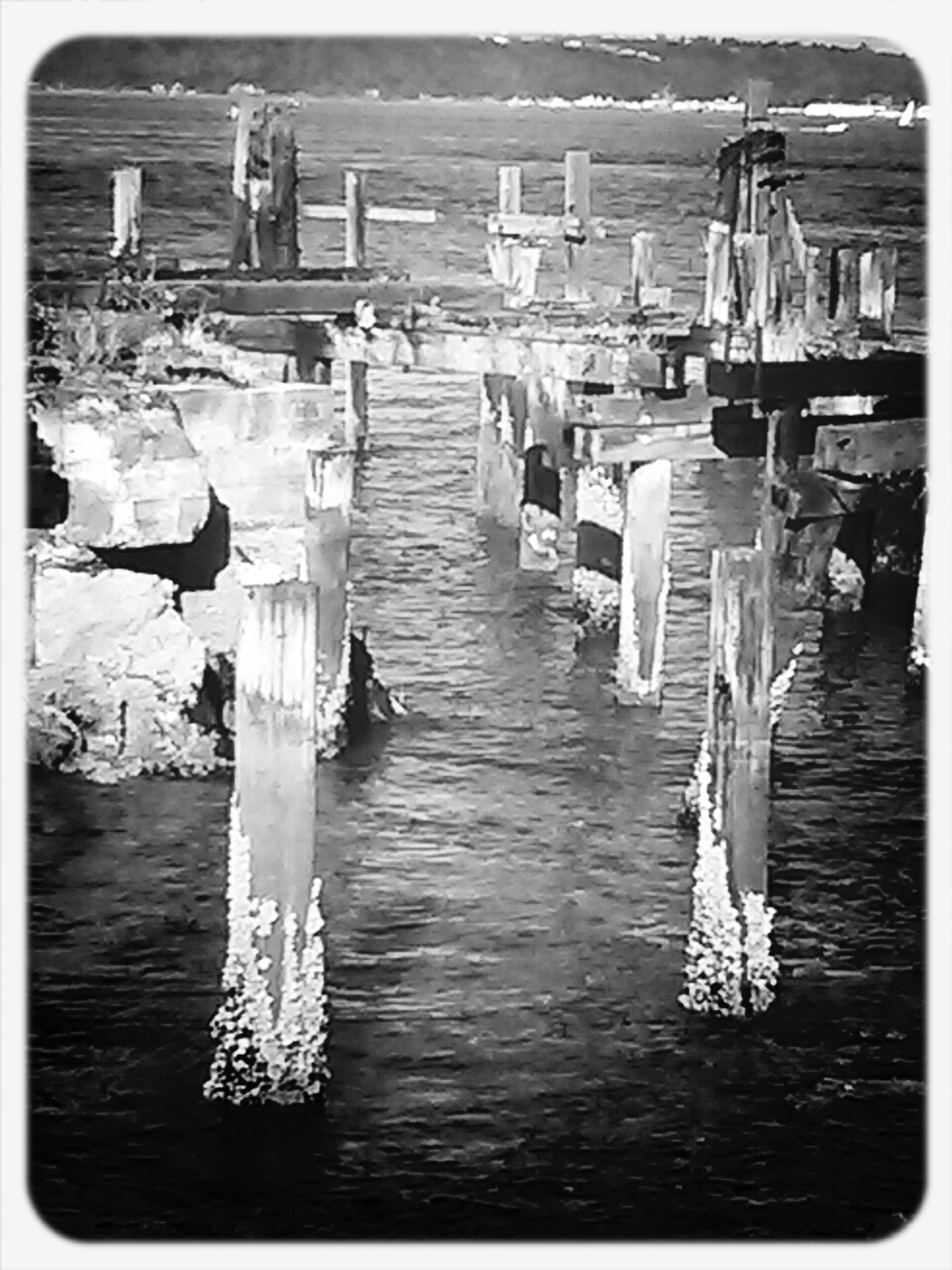 transfer print, auto post production filter, water, in a row, wood - material, sea, day, pier, waterfront, outdoors, wooden post, large group of objects, built structure, sunlight, no people, incidental people, panoramic, moored, wood, nautical vessel