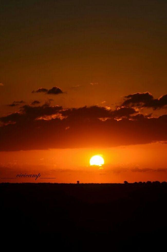 AMA MUCHAS COSAS PORQUE EN AMAR EXISTE LA VERDADERA FUERZA... Nature_collection EyeEm Nature Lover Sunsetporn Sky Collection