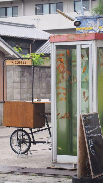 電話ボックス きんぎょ Talking Photos Enjoying Life EyeEm Best Shots Telephone Box