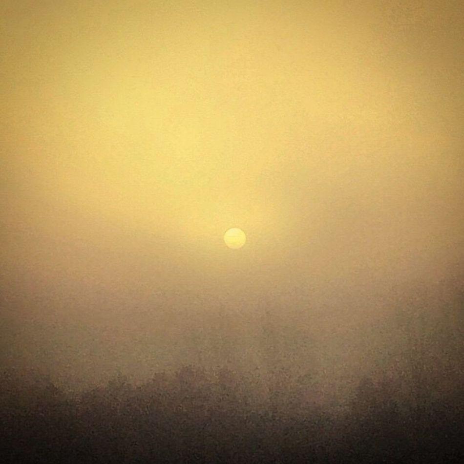 Morning Sun Fog Beautiful Light No Filter From My Window Malmö Skåne Sunrise Winter Sun