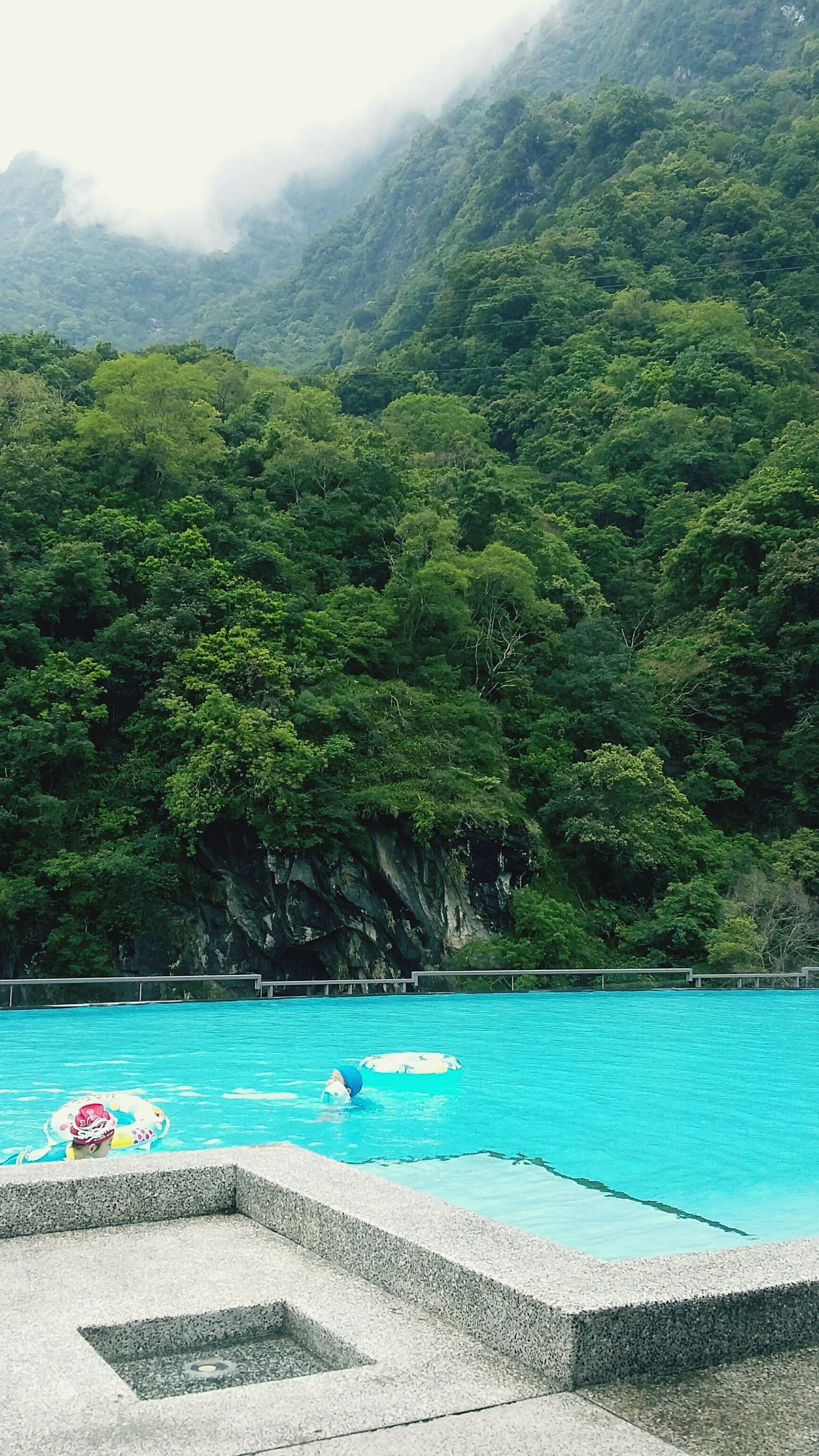 water, swimming pool, tree, green color, no people, tranquil scene, scenics, tranquility, day, nature, beauty in nature, outdoors, sea, sky