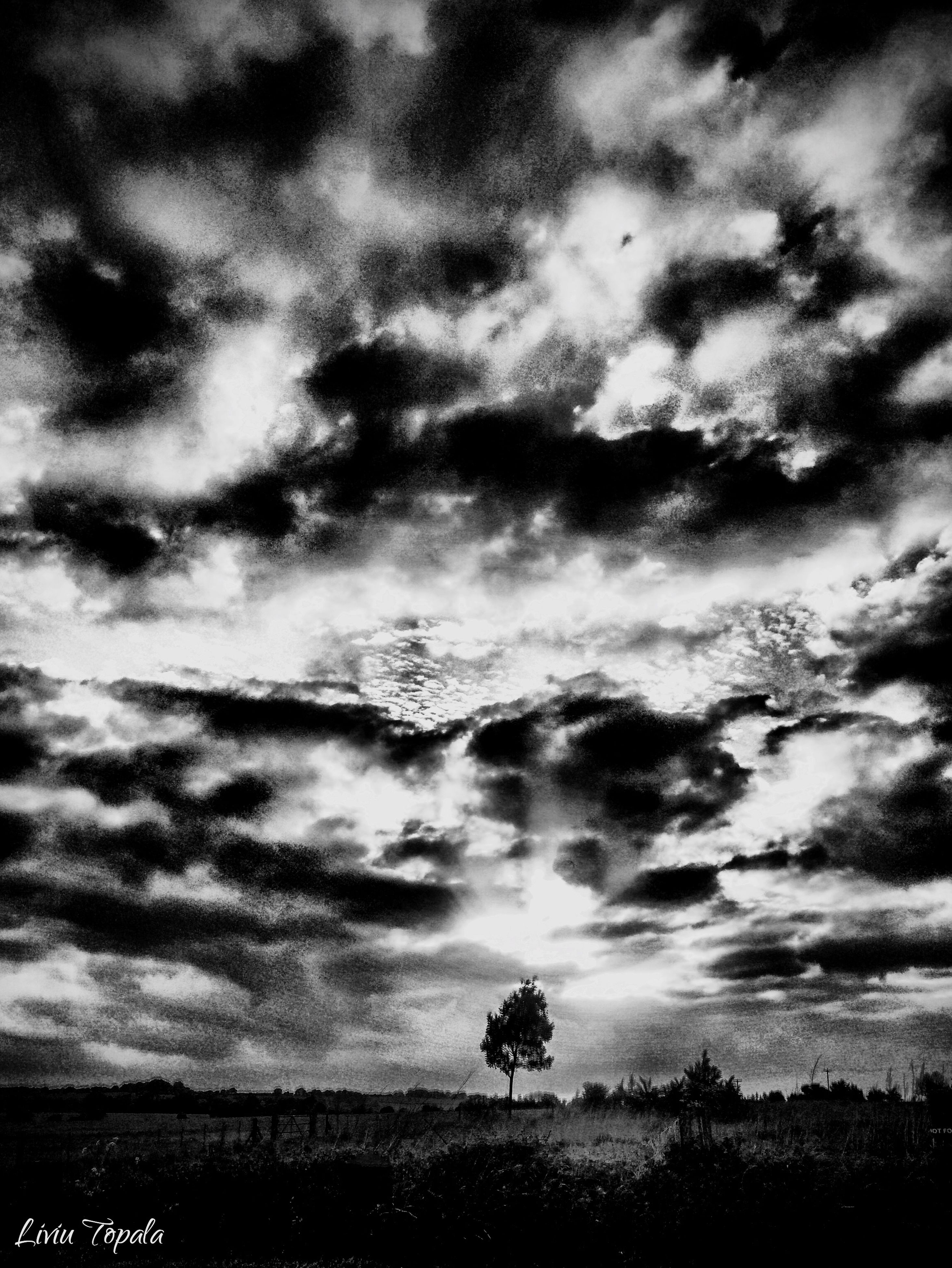sky, cloud - sky, cloudy, scenics, tranquil scene, tranquility, beauty in nature, weather, tree, landscape, nature, overcast, cloud, silhouette, dramatic sky, cloudscape, field, idyllic, storm cloud, atmospheric mood