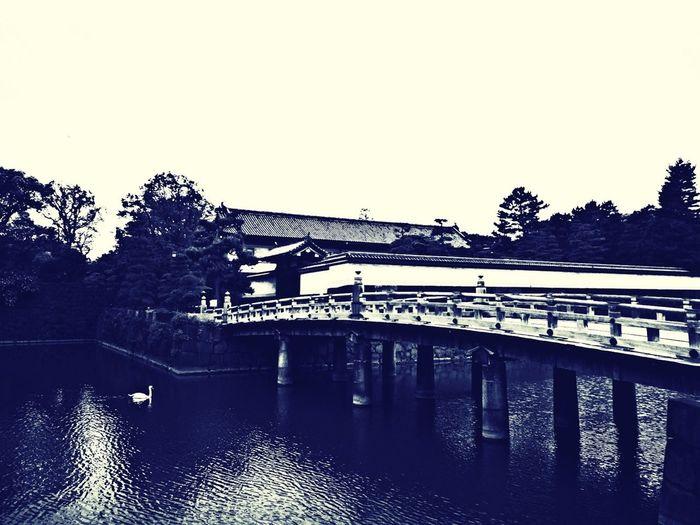 A Gate and Bridge of Edo Castle Historical Building Architecture Japan Bridge