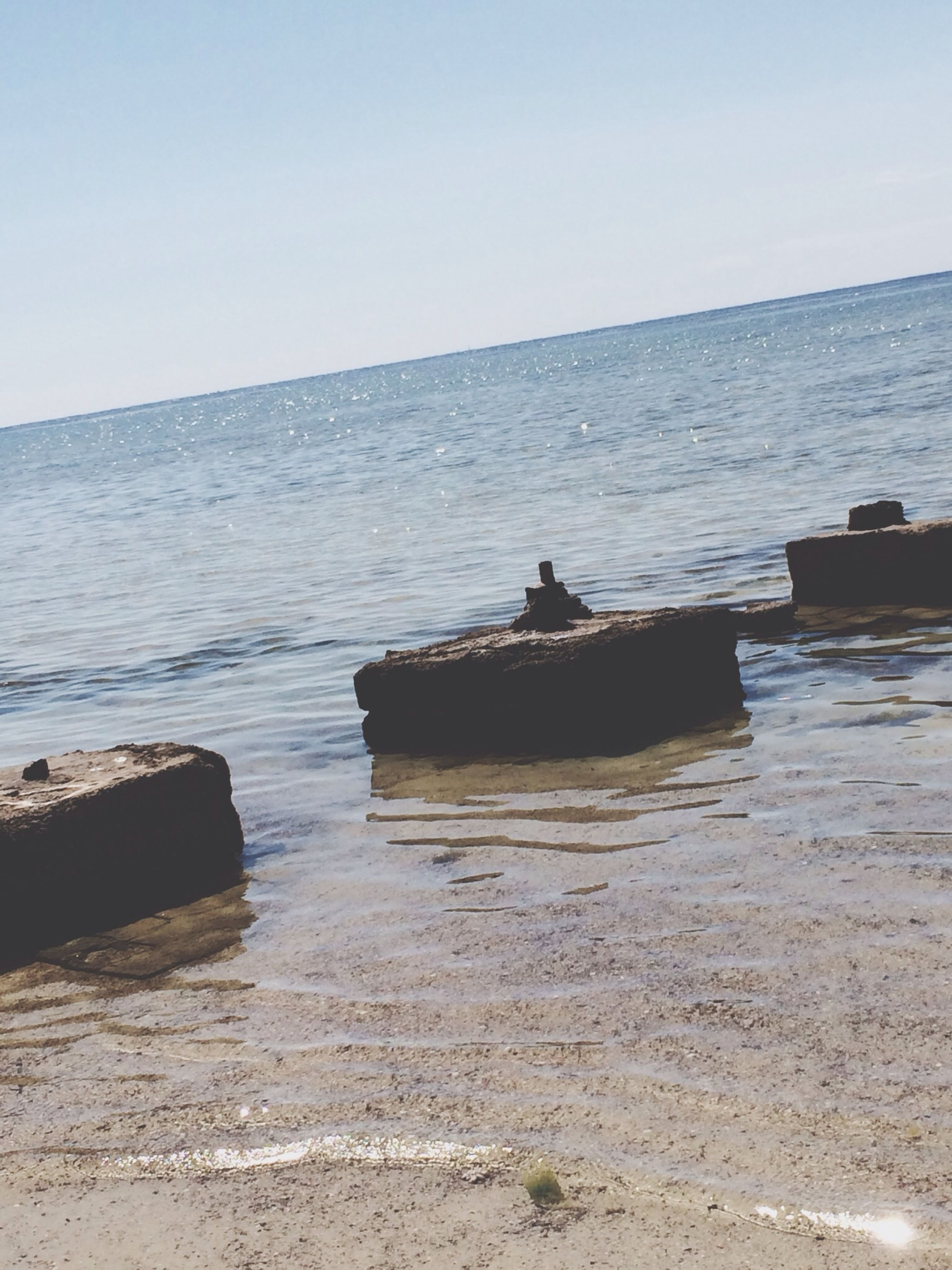 water, sea, clear sky, tranquility, tranquil scene, animal themes, one animal, horizon over water, copy space, nature, scenics, beach, beauty in nature, sky, shore, rock - object, idyllic, outdoors, nautical vessel, day