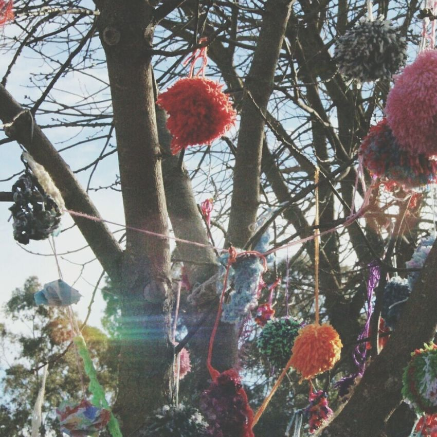Tree Hanging Red No People Low Angle View Christmas Day Growth Branch Outdoors Christmas Decoration Nature Close-up Sky Pompom EyeEmNewHere