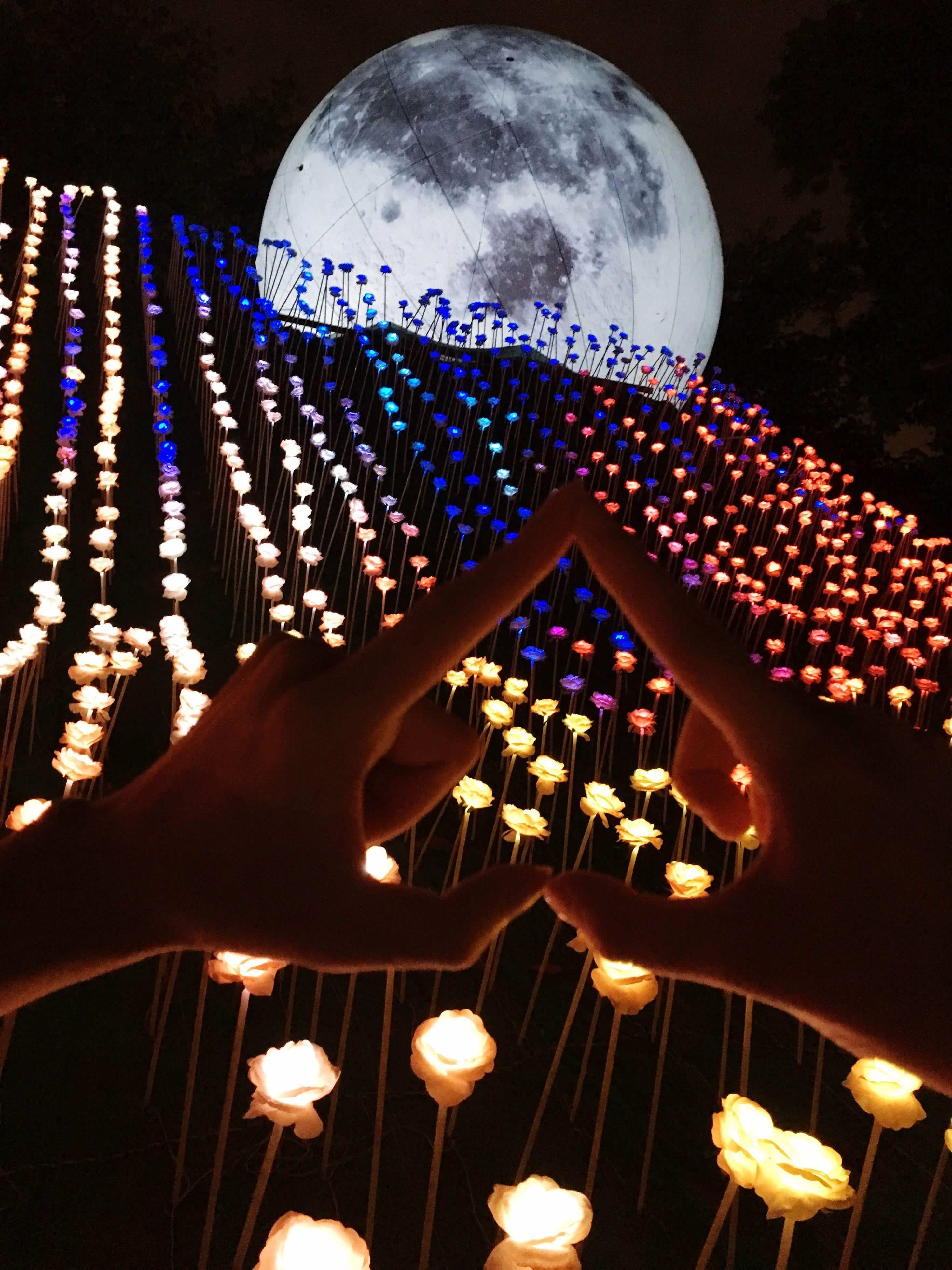 celebration, illuminated, indoors, night, no people, close-up