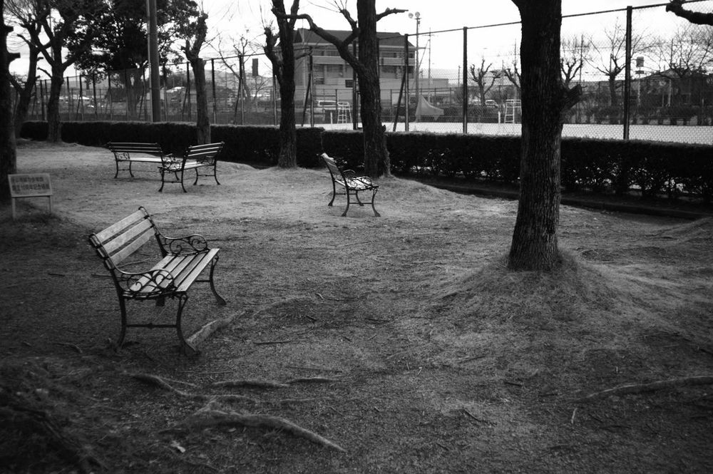 Playground Outdoors Empty Tree No People Day Avenon 28mm F3.5 LTM Avenon2.8 Japan Photography Black And White Collection  My Photography Monochrome Photography Black & White Epson R-D1 Black And White Photography EyeEm Best Shots - Black + White Bench Irregular Positioning Position