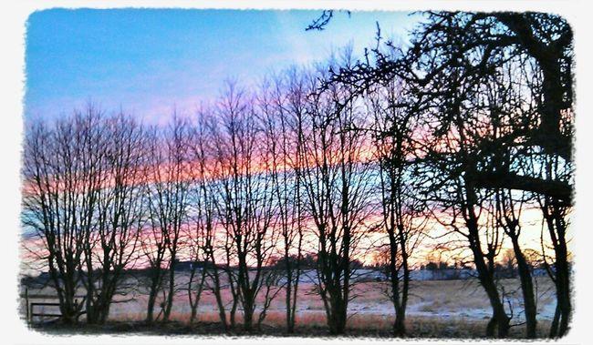Nature Sunrise Art Early Morning Magic Heavenly Colors