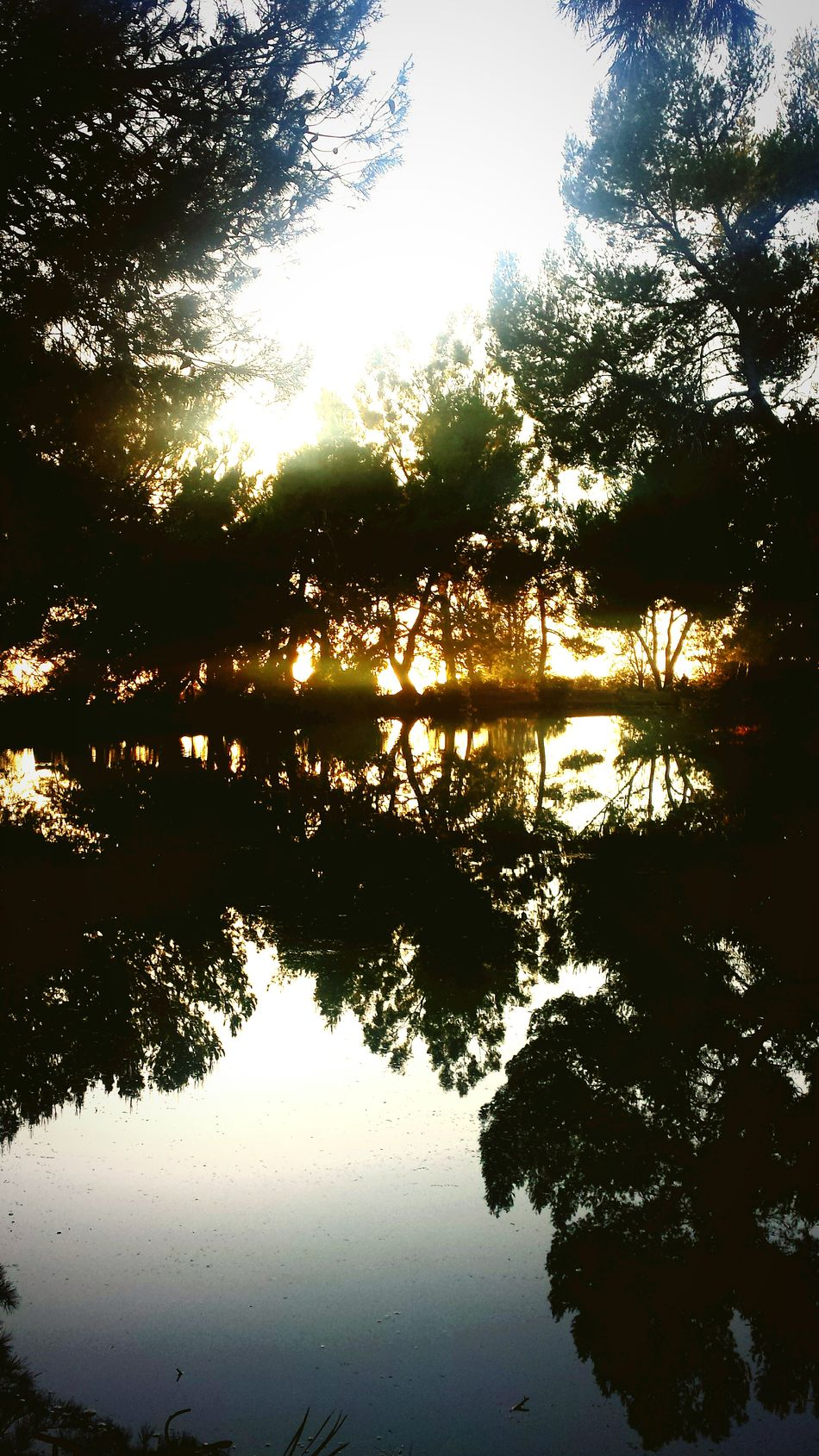 Amazing sunset lake view! Relaxing Jogging Making Memories! :) Getting Inspired Check This Out