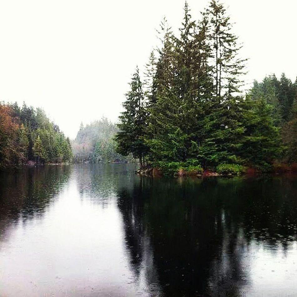 Rice Lake North Vancouver BC Northvancouverbc Ricelake Refreshing Lake trees rainyday hiking BeautifulBC