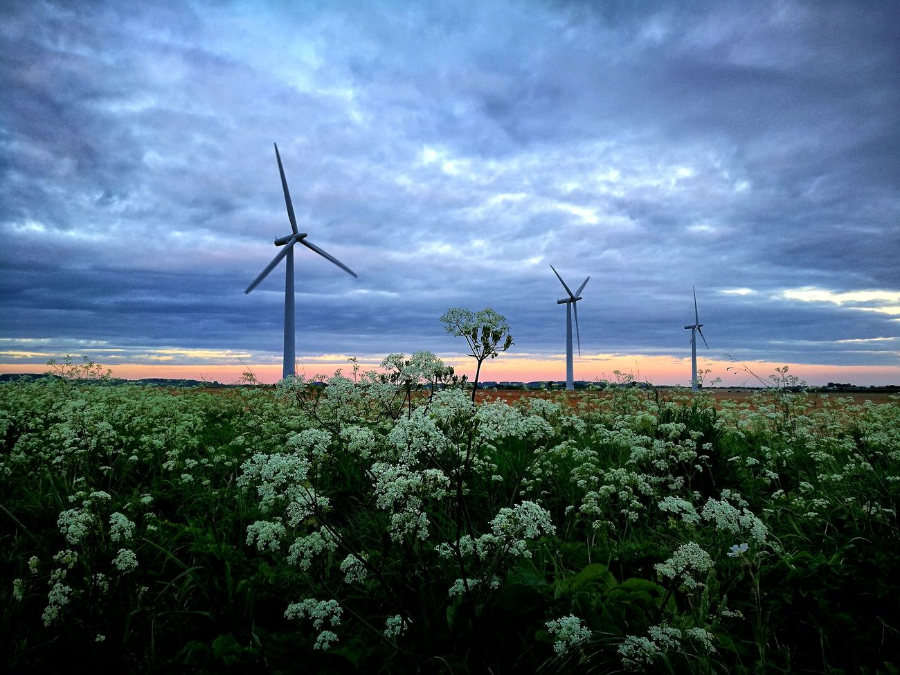 Travel Photography Cloud - Sky No People Agriculture Wind Turbine Nature Rural Scene Sky Landscape Alternative Energy Beauty In Nature Passion Loveit Photo Beauty In Nature Myplace Exploring Taking Photos Londra Inghilterra Flowers Inmyheart Always The Great Outdoors - 2017 EyeEm Awards
