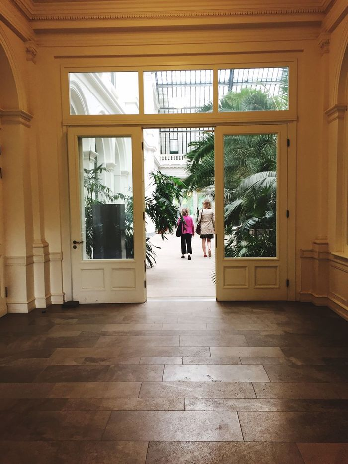 Impressions from Palmengarten Frankfurt am Main Palmengarten Palmenhaus Behind The Door Door People People Photography Palm Trees Nature Photography Building Structures Naturelovers Nature_collection