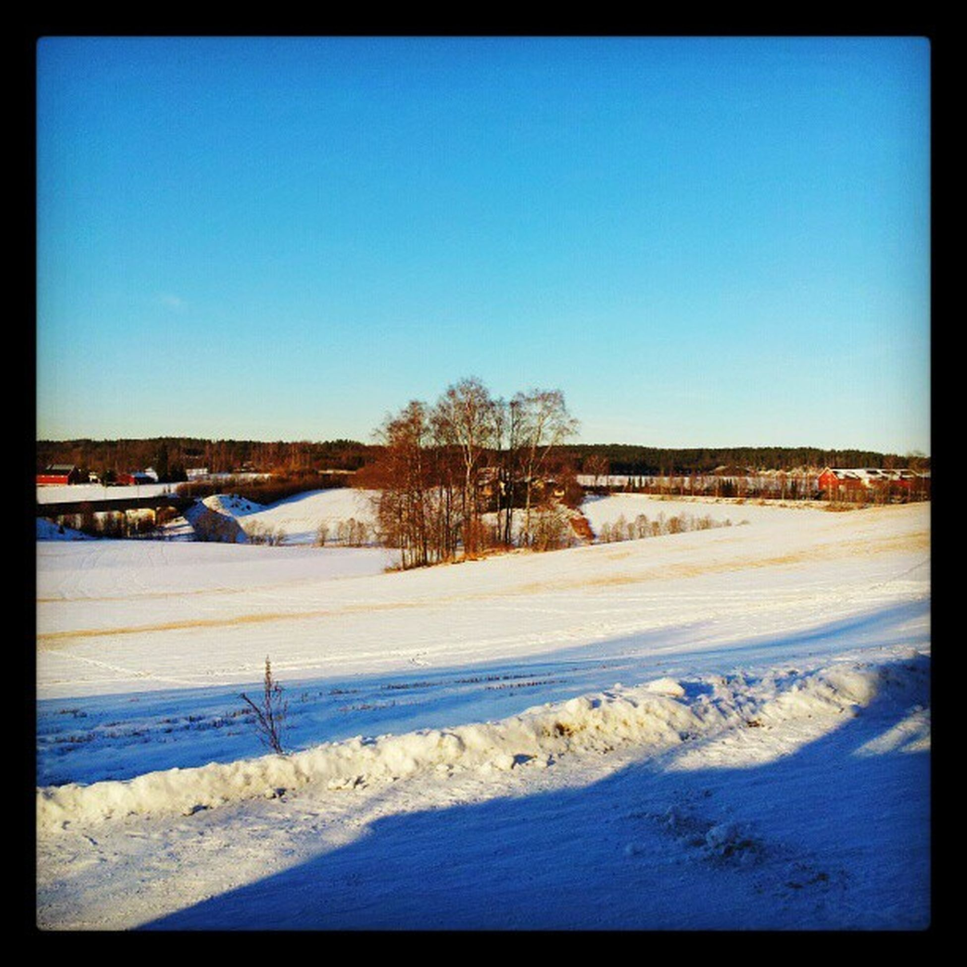 Holstad BL åhimmel Sn ø Sunshine solskinn snow road tracks fields trees countryside norway norge akershus