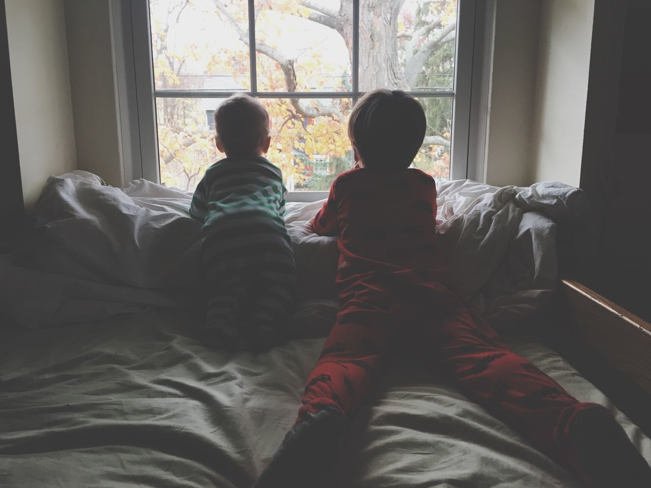 Window Child Indoors  Two People Boys Childhood Males  Togetherness Day Bonding Real People People Brothers Family Sunday Morning