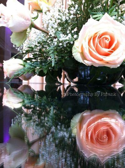 Reflection Flowerporn