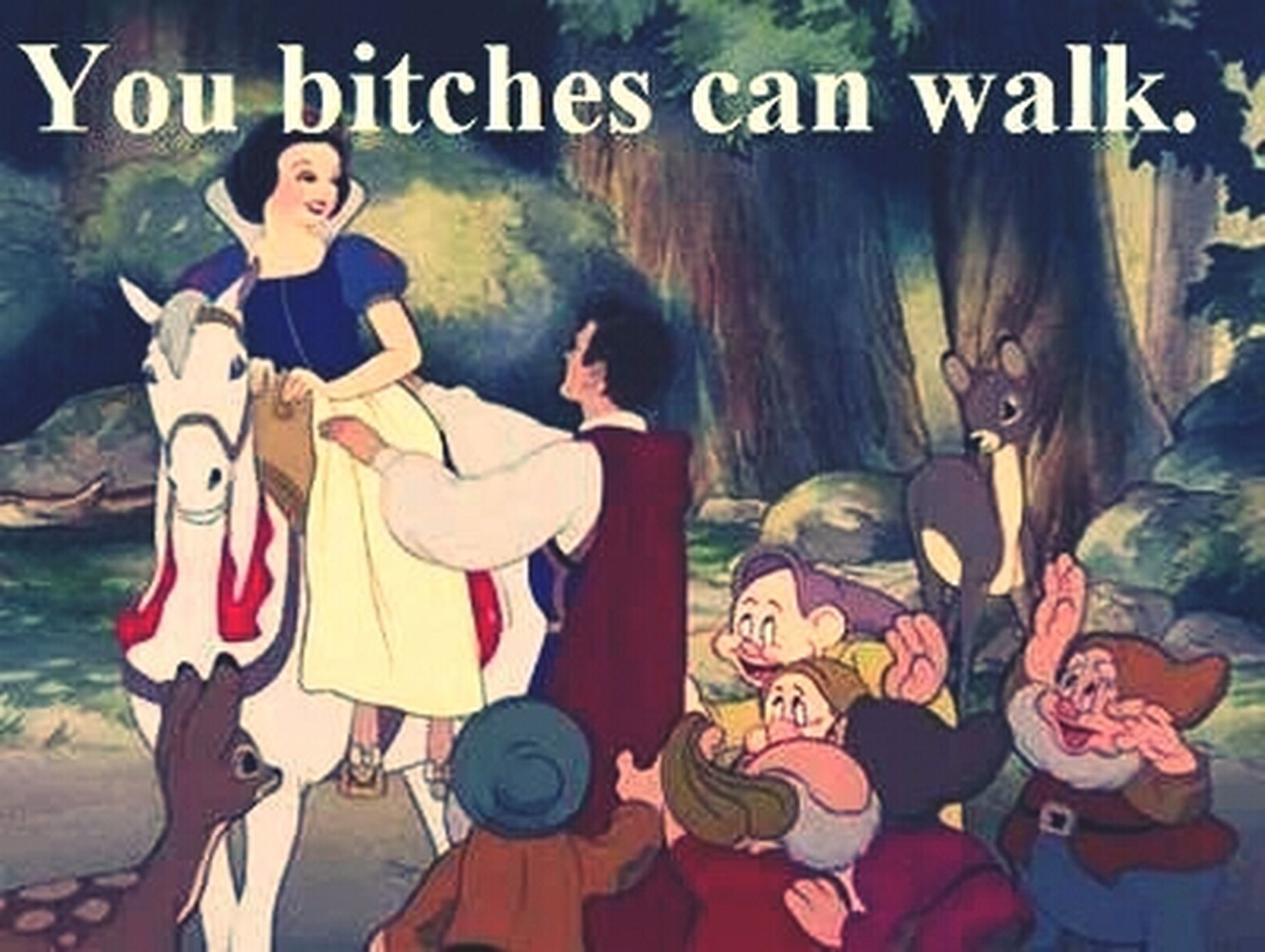 Blanche Neige Disney Les 7 Nains