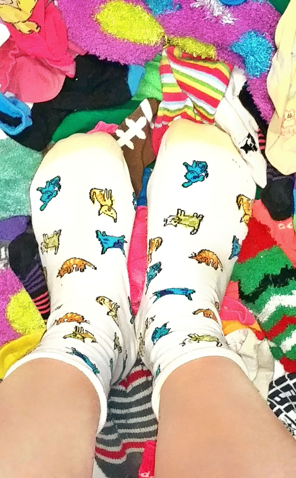 TK Maxx Socksie Socks Design Funny Socks Multi Colored Abundance Large Group Of Objects Variaty Foot Soft Texture Close-up Colorful Comfortable Cozy Bright Colors Texture Softness Cute Socks Pattern Multicolors  Multicolors  Long Socks Multicolors  Clothing Colorful Socks