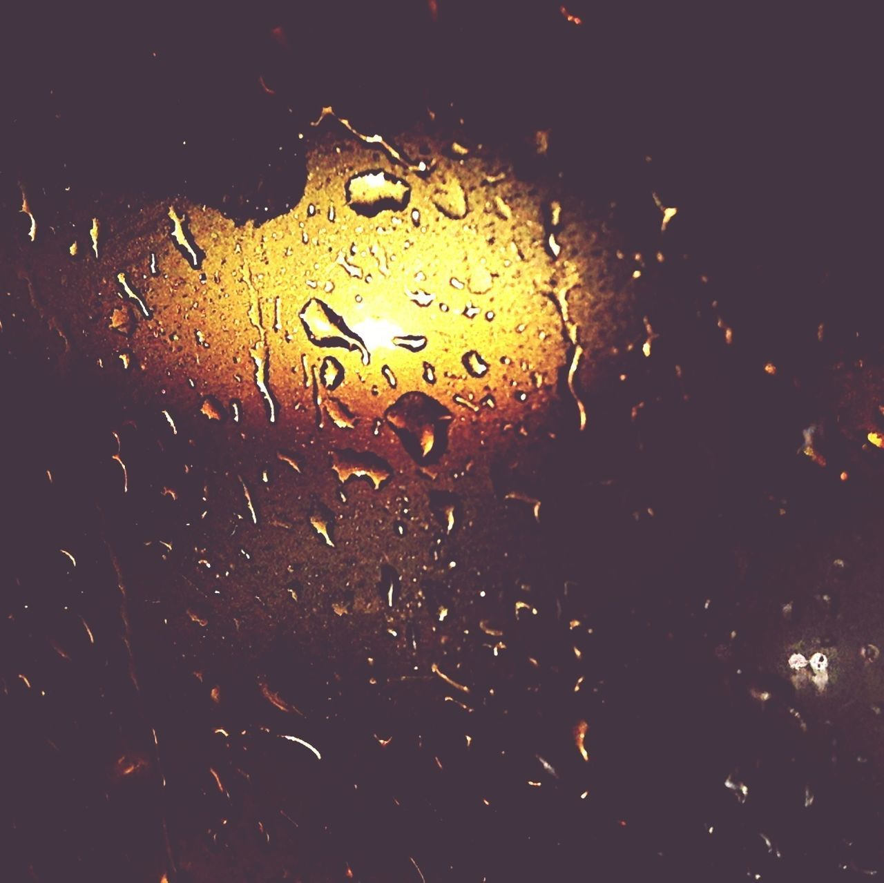 drop, wet, water, no people, raindrop, close-up, night, indoors, illuminated, backgrounds, black background, nature