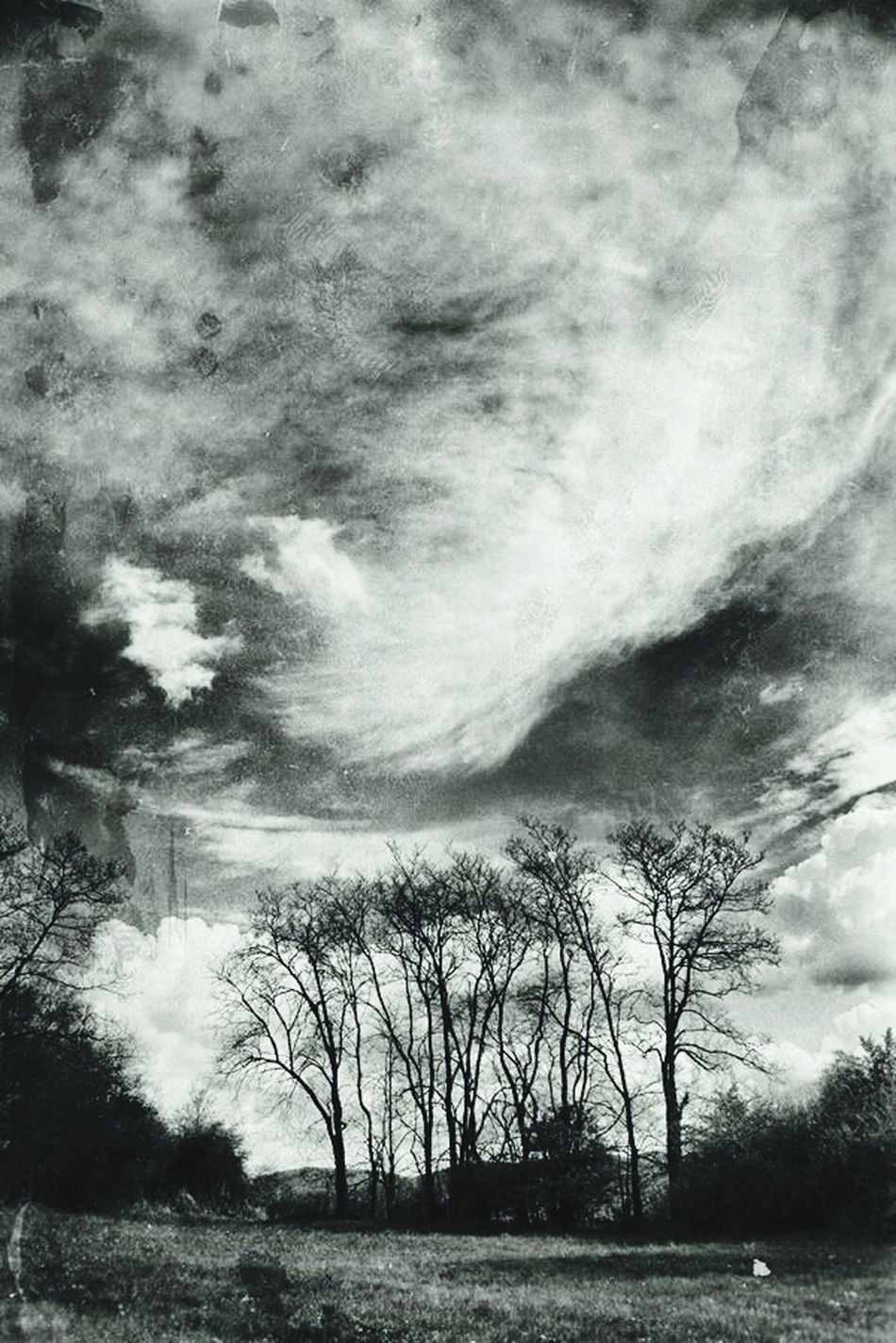 Dark Clouds Above The Clouds Winter Trees Black Magic
