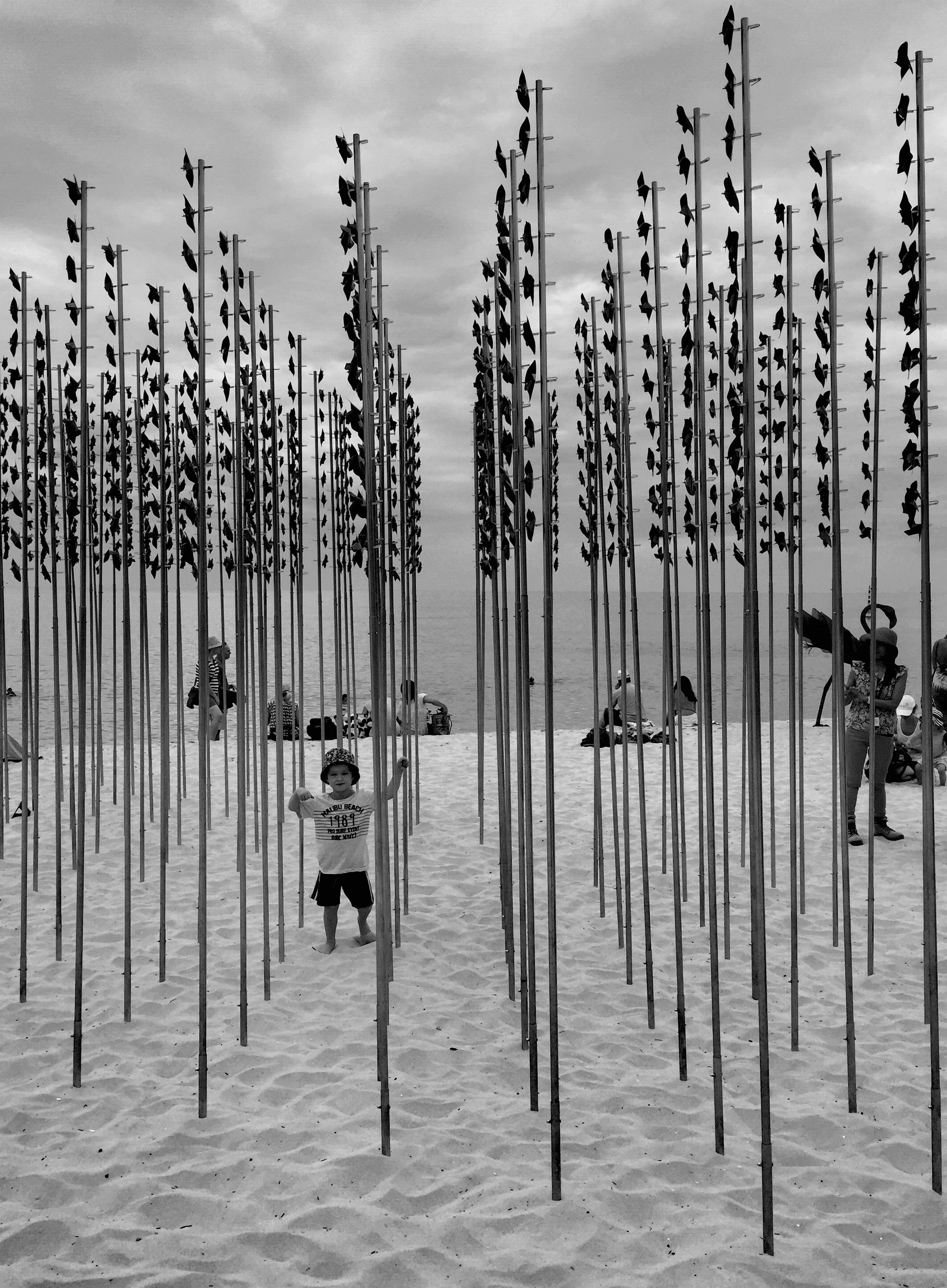 large group of objects, in a row, sky, abundance, arrangement, side by side, group of objects, beach, order, variation, hanging, day, no people, wooden post, outdoors, pole, repetition, sand, fence, wood - material