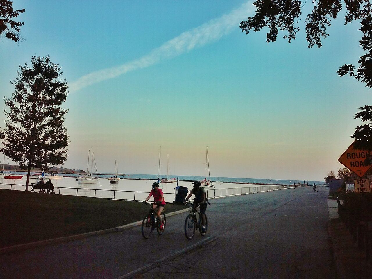Dusk Toronto Canada TorontoLife Toronto Landscape Things I Like Bycicle Lovers Couple Sunday Sports Port Ships Sailing Boat Lake Ontario Lakeshore Road Sign Up Close Street Photography The Street Photographer - 2016 EyeEm Awards The Following The Essence Of Summer The OO Mission The 00 Mission