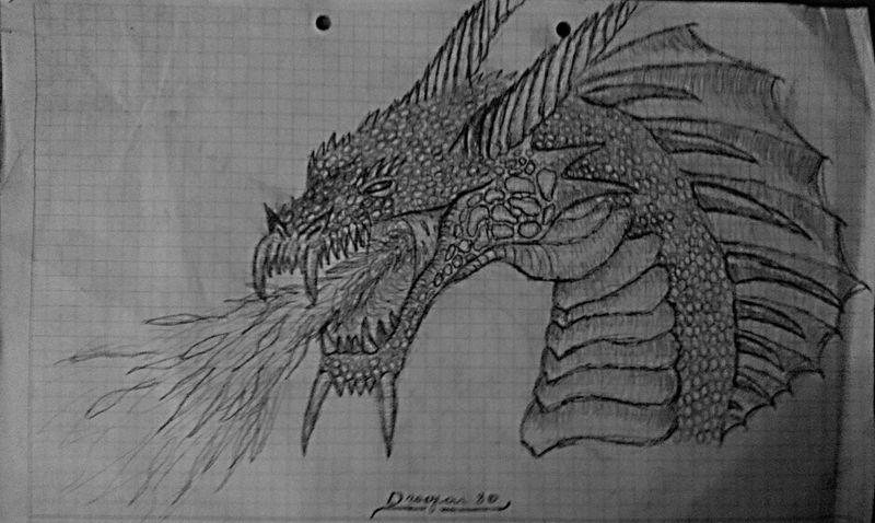 Dragon Drawing EyeEm Best Shots Details