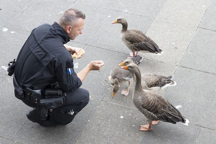 Feeding  G20 Gipfel G20 Summit Hamburg NOG20 ONLYHUMAN Axvo Beak Bird Day Duck Ente Futtern Goose One Person Only Human Outdoors Police Real People Street Water Water Bird