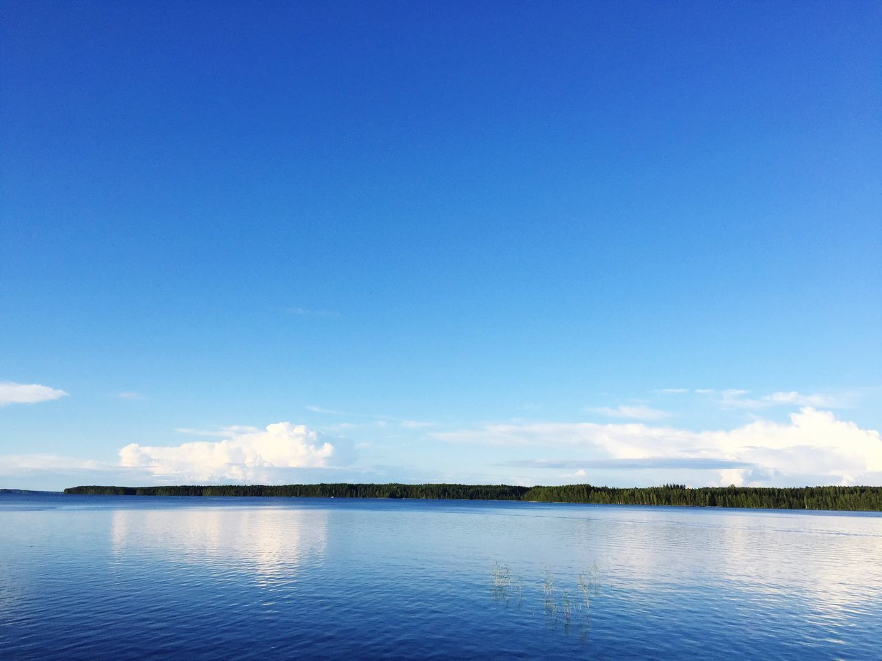 Finnish Lakeview Lake Lakeside Lake View Lakeshore Lakescape Blue Blue Sky Finnland Finland