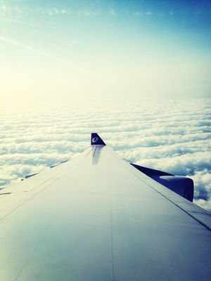 from an airplane window by Polina
