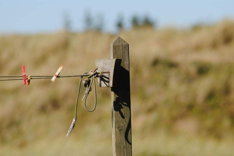 Close-up Clothes Clip Clothes Peg Clothesline Denmark Denmark 🇩🇰 Eye4photography  EyeEm Masterclass EyeEm Nature Lover Focus On Foreground Geometric Shape Grass Housework Hvide Sande Laundry Laundry Line Lifestyles Nature Nature_collection Nikon Rural Scene Social Issues Streamzoofamily Wood Wooden