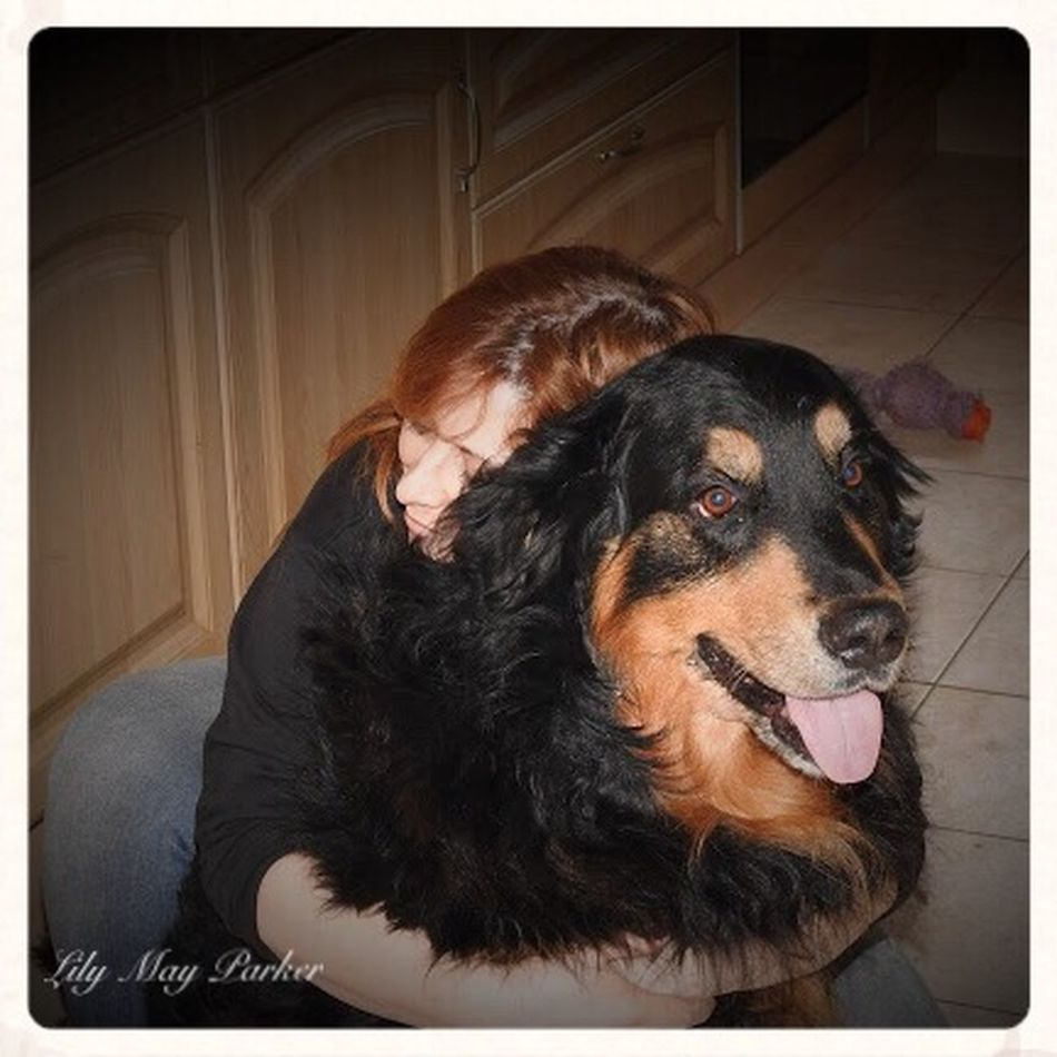 Love Therapie❤️ Hugging Check This Out Hanging Out Hello World Cheese! ❤ Dog❤ Belgium EyeEm Gallery Beautiful Eyem Nature Lover My Dog :) Animal Themes Lily Lily May Parker Nature Animal Dogs ❤️ Enjoying Life Taking Photos Playmates Berner Sennen