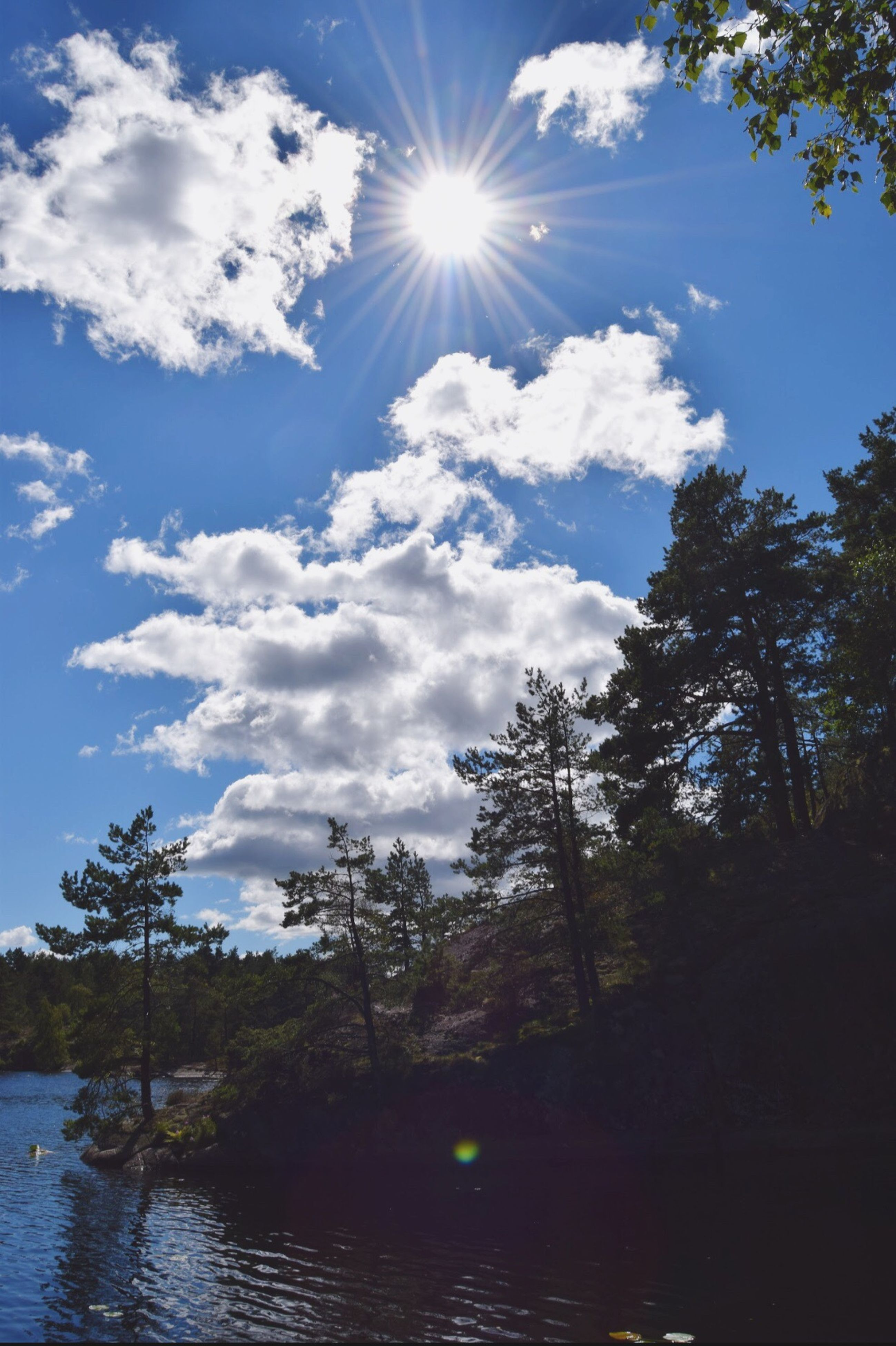 sky, blue, water, tree, sun, cloud - sky, nature, sunlight, outdoors, sunbeam, no people, scenics, beauty in nature, day