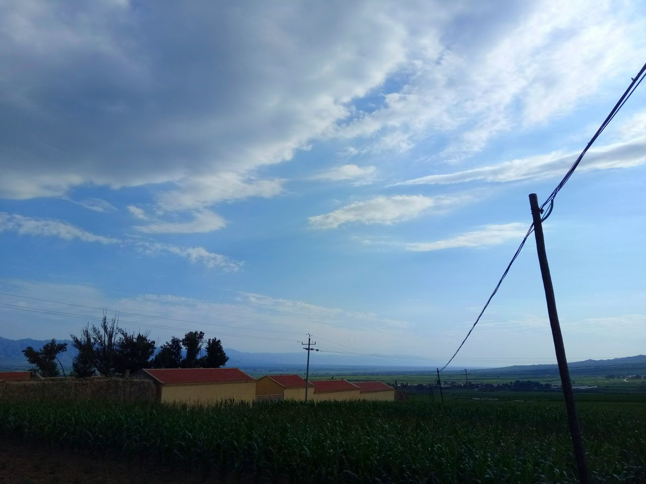 cloud - sky, sky, cable, day, no people, outdoors, nature, beauty in nature, scenics, grass, tree, telephone line