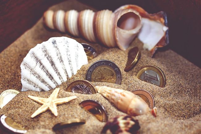 Things ı Like Kiomi Collection Showcase April Sands Sea Shells Seastar Euro Coins Treasure Chest The Kıomı Collection
