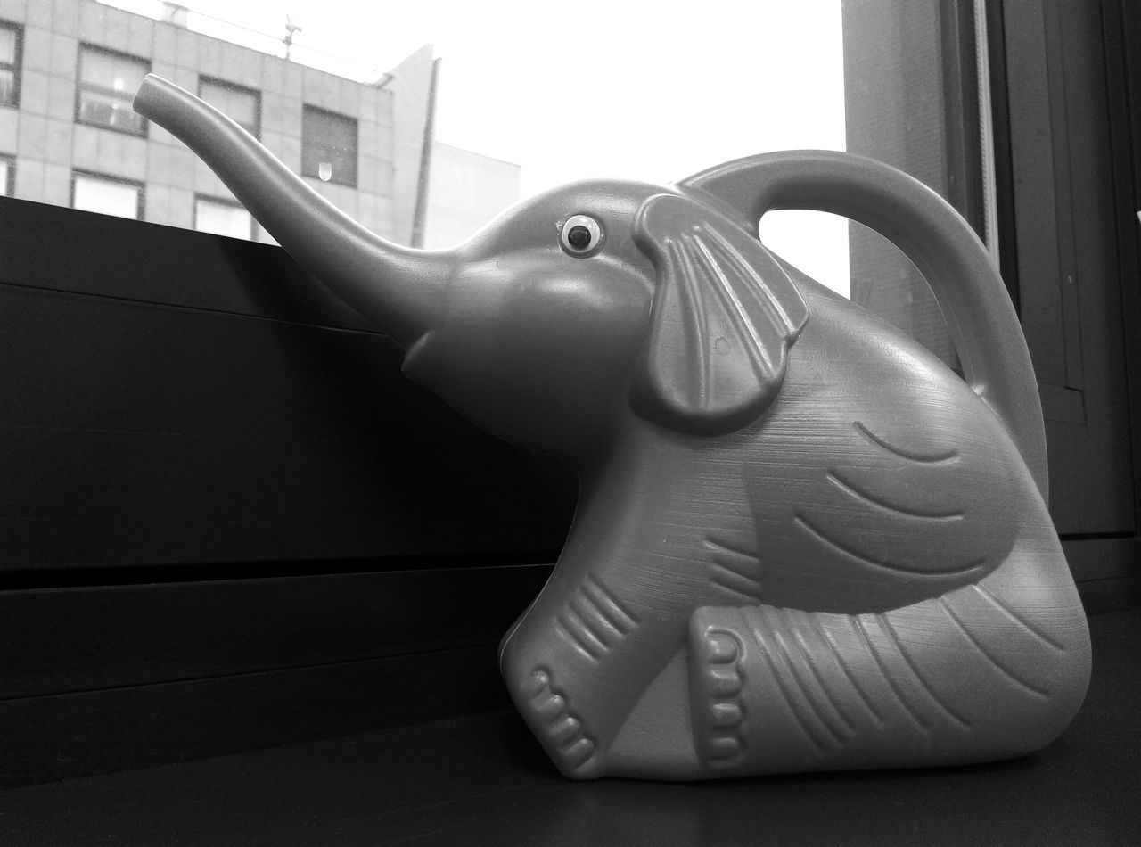 Berlin Close-up Comfortable Elephant Looking Out Of The Window Single Object Sitting Watercan