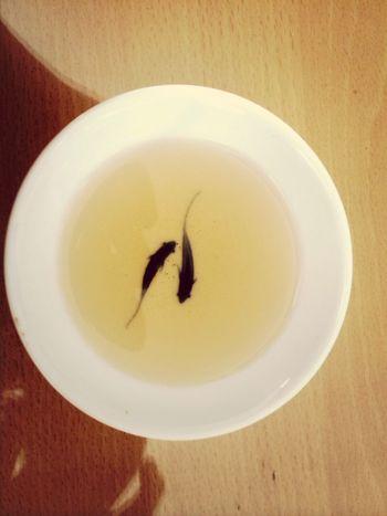 Tea Tasate