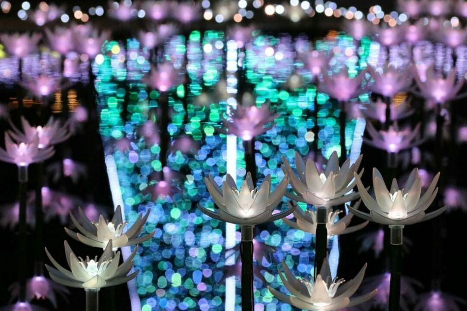 Illuminated No People Business Finance And Industry Fragility Night Lightup Event Reflection Reflection Photography Tochigi.japan Japanese Girl ファインダー越しの私の世界 写真撮ってる人と繋がりたい カメラ好きな人と繋がりたい カメラ女子