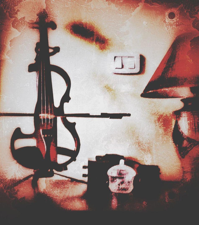Violinist Violin Violinists Violinista Violon Electric Violin