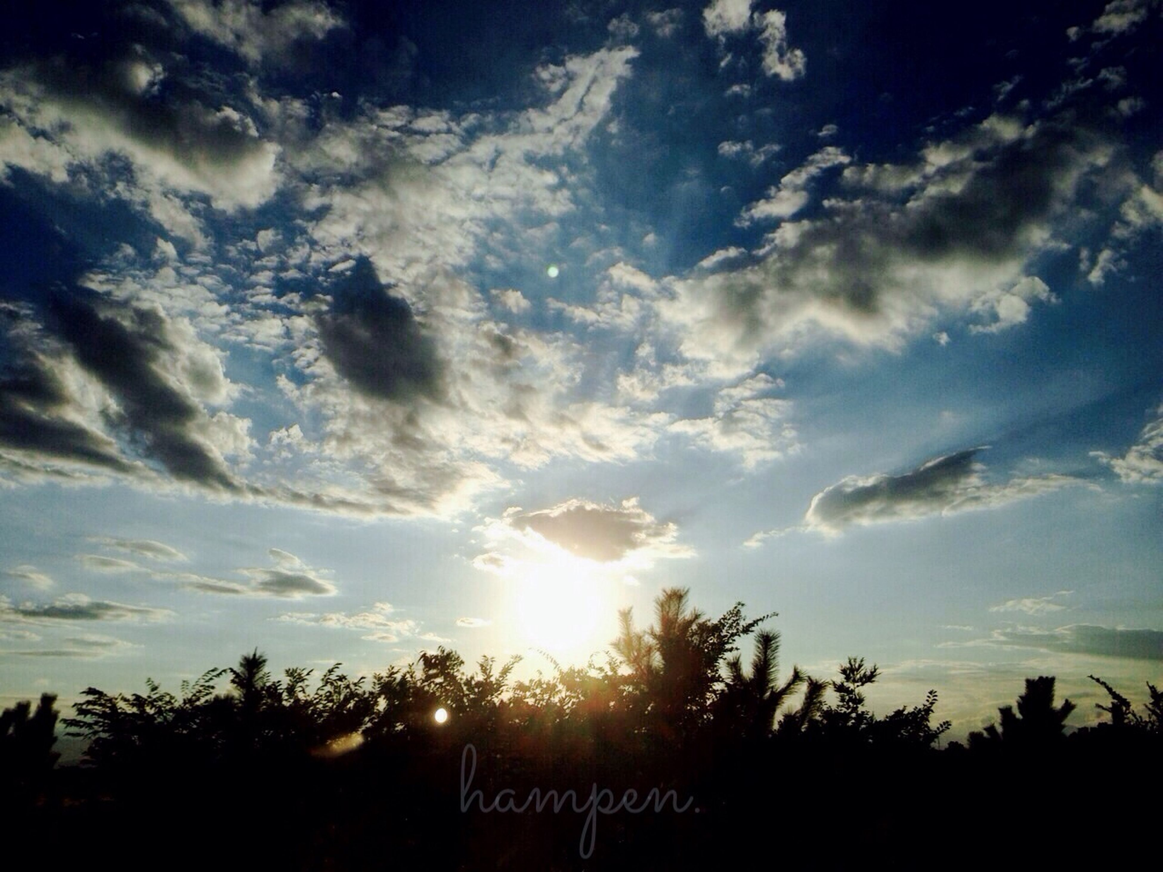 sky, silhouette, cloud - sky, tranquility, sunset, sun, beauty in nature, tranquil scene, scenics, nature, tree, sunbeam, cloud, sunlight, low angle view, idyllic, cloudy, growth, landscape, field