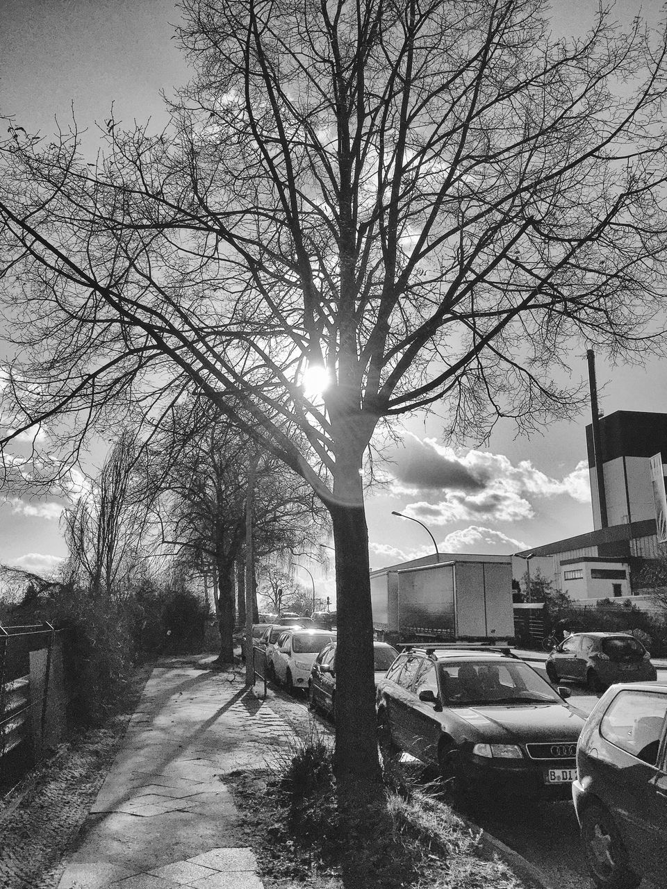 car, transportation, land vehicle, lens flare, bare tree, sunbeam, mode of transport, sun, built structure, tree, outdoors, building exterior, road, sunlight, sky, no people, architecture, nature, day
